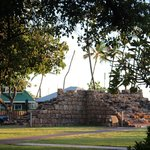 The old wall next to the Banyan tree