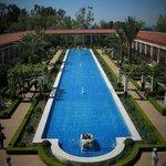 Getty Villa Gardens