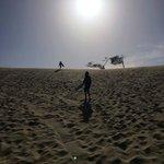 Sand Master Park board rentals - Honeyman State Park, Florence, OR