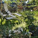 im Garten unter dem Apfelbaum