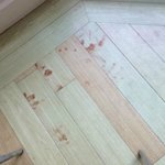 Stain (looks like blood) on the kitchen floor