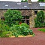 les nefliers-Brocéliande-Bretagne-Morbihan
