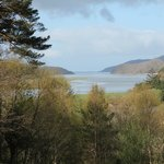 Coed Cae overlooking the Mawwddach Estuary