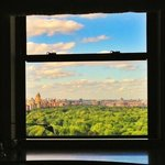 a window with central park view