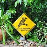 Kookaburra's Sanctuary