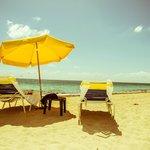 Still life on the beach