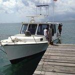 Dock Pickup