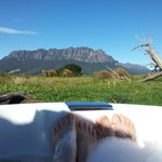 View from the outdoor spa at Eagles Nest 2
