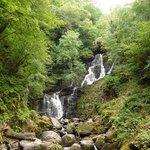 Parco Killarney