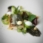 Soused mackerel, English wasabi, char grilled cucumber, baby beetroot