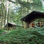 McKenzie River cabins at Horse Creek Lodge