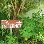 Excellent Internet & TV reception