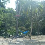 Caribbean Adventure - Hammock for Baby Nap Time!