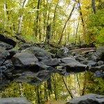 Northeast side trail - Autumn