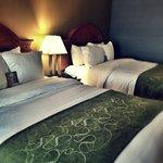 Comfort Suites Southgate