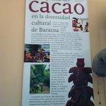 Casa del Cacao