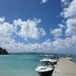 Great Harbor-Jost Van Dyke