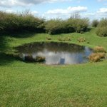 pond on the south downs walk