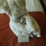 towel animals in kids room!