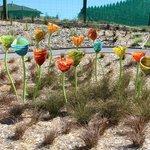 Scultpure Garden @ the Lava Glass Factory