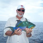 Trigger fish caught Reef Fishing