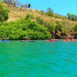 Kayaking around the Mangrove's