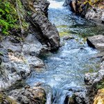 Little Qualicum Falls Summer