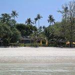 Beachfront Villa 51