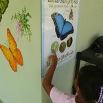 A visit to Butterfly Haven is educational and fun!