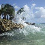 Île Rocky Cay