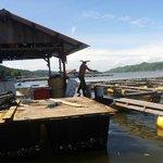 Pudak Fish Farm