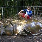 ryan having fun on a metal hippo