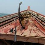 sortie pêche locale