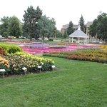 Gardens at CSU