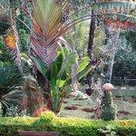 Hotel - Garden