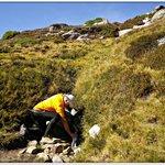 Tomando agua del nacimiento del Duero. A los pies del Pico Urbión