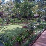 Exquisite garden !!