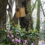 昭和の森の野鳥の巣箱