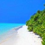Thoddoo Beach