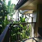 Partial oceanview from the lanai