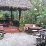 Photo of Bee Tree Food & Bar
