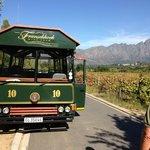 """Der Wein """"Bus"""""""