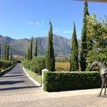 Grande Provence Wine Estate