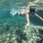 clear and calm waters for amazing snorkelling