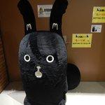 Mini Mascott - Risu (black squirrel)