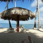 Ma vue sur la plage a partir de mon Palapas