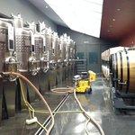 Inside vineyard basement
