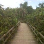 passarelas para praia de Jurerê