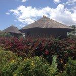 Tukul huts