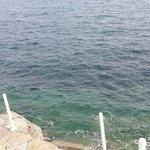 Deniz miss gibi
